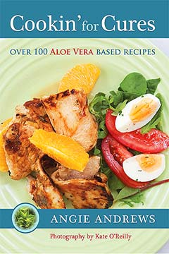 Softcover A4 Book + 3 FREE Recipe Cards PDF Cover
